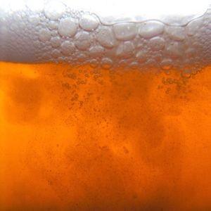 Saison, a Belgian Ale