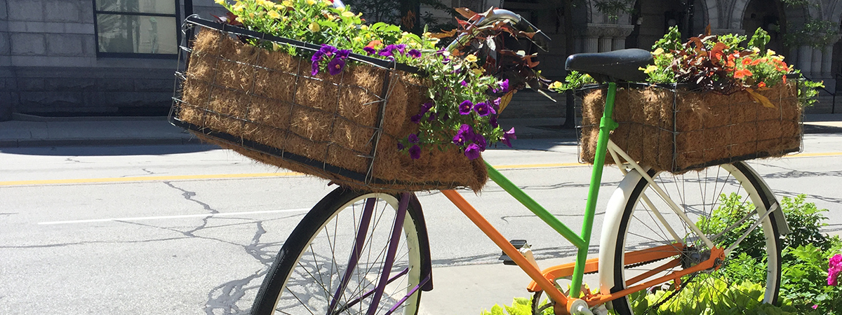 botanicalbike_version2